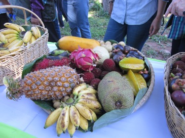 Pineapple, jackfruit, bananas, star fruit and dragon fruit