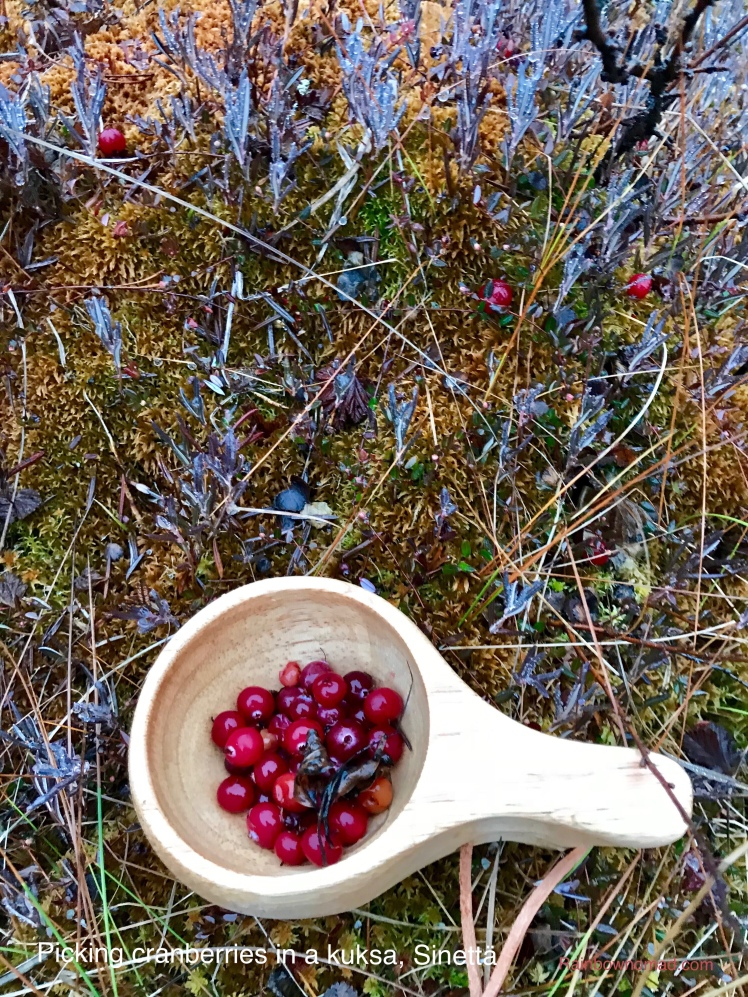 Cranberries in a kuksa, Sinettä